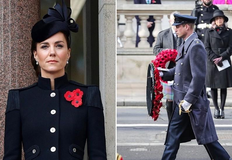Кейт Миддлтон и принц Уильям провели виртуальные встречи в рамках Недели памяти